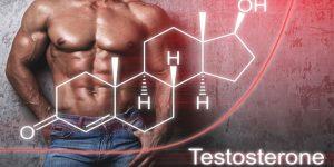 هورمون تستوسترون در بدنسازی