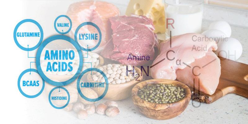 آمینو اسیدهای ضروری و غیر ضروری